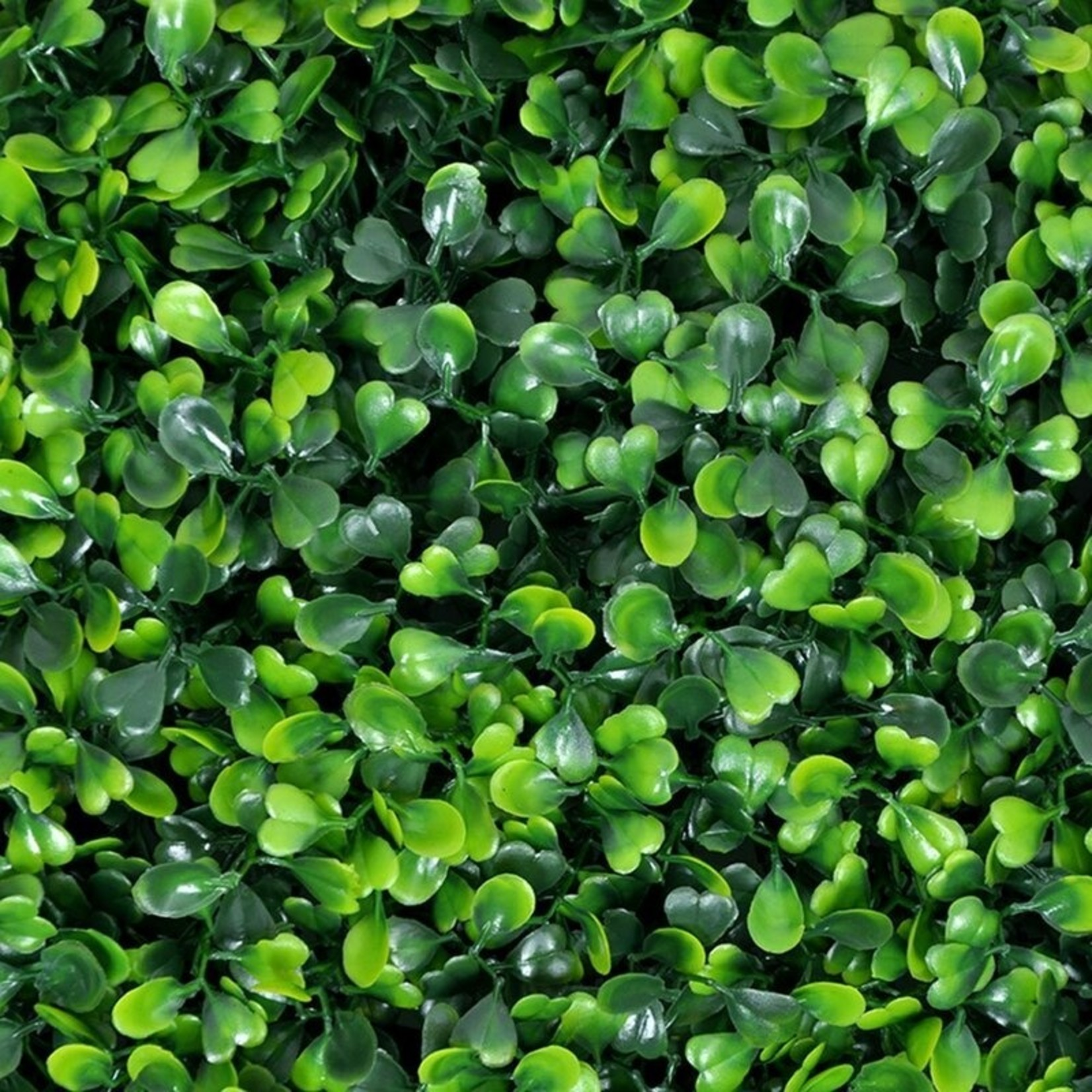 "*20"" x 20 "" Artificial Boxwood Hedge Greenery Panels Turf - Set Of 12 - Milan"