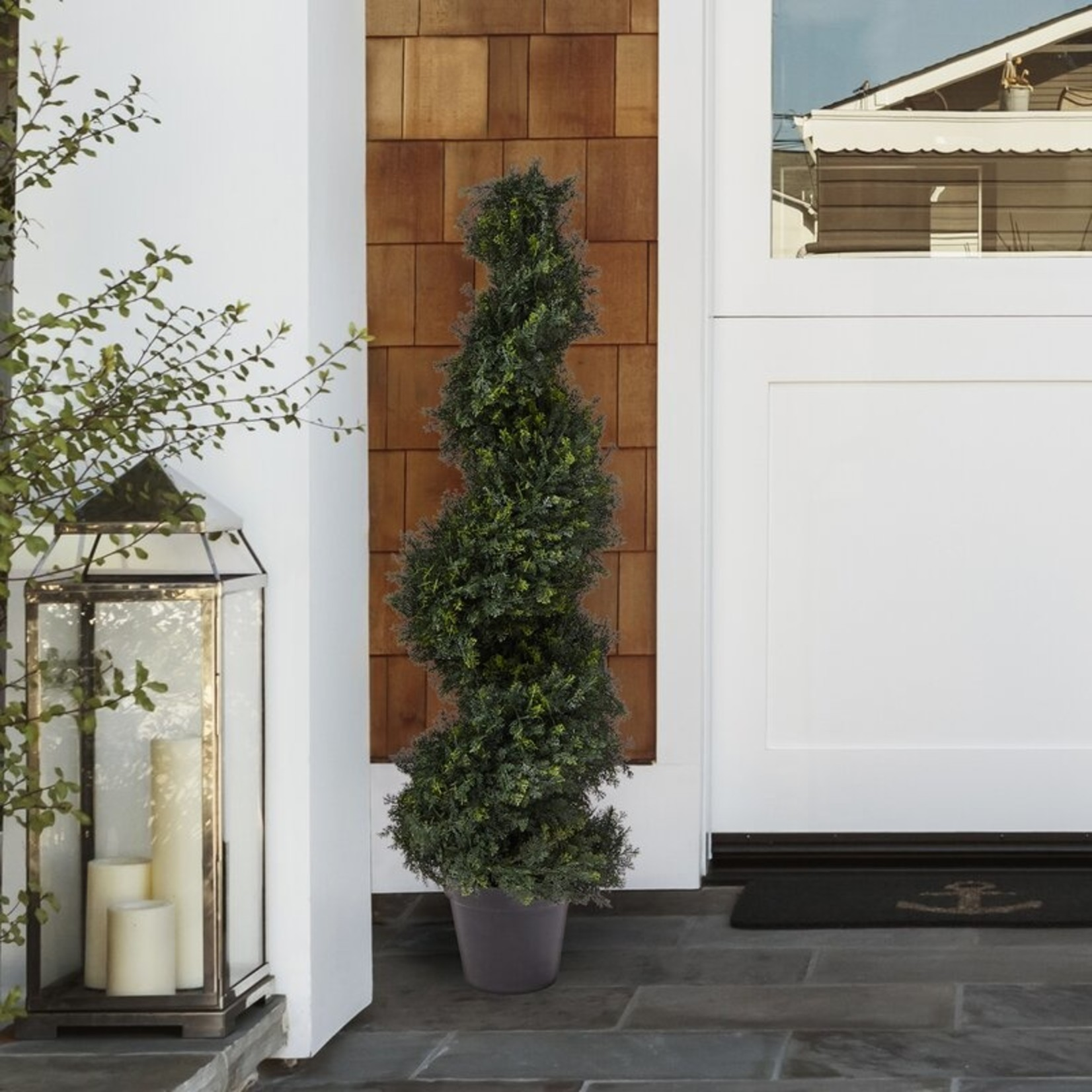 *Spiral Cypress Topiary in Pot