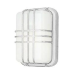 *Hintz 1 - Bulbs  Outdoor Bulkhead Light