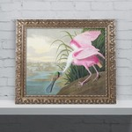 "*19.75'' H x 23.75'' W - ""Roseate Spoonbill"" by John James Audubon Framed Graphic Art"