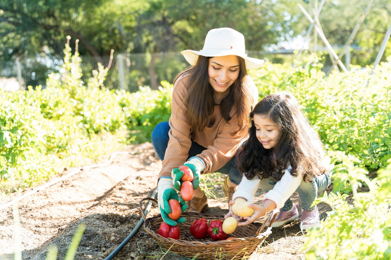 What You Need to Know to Start Your First Vegetable Garden