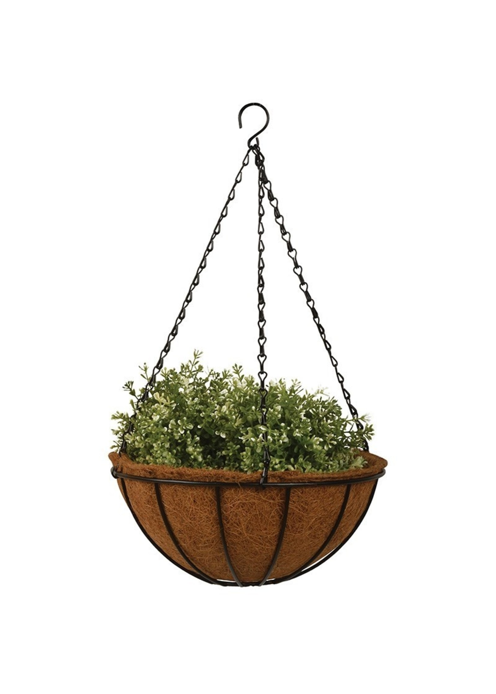 """Metal Hanging Basket with Coco Liner 12"""""""