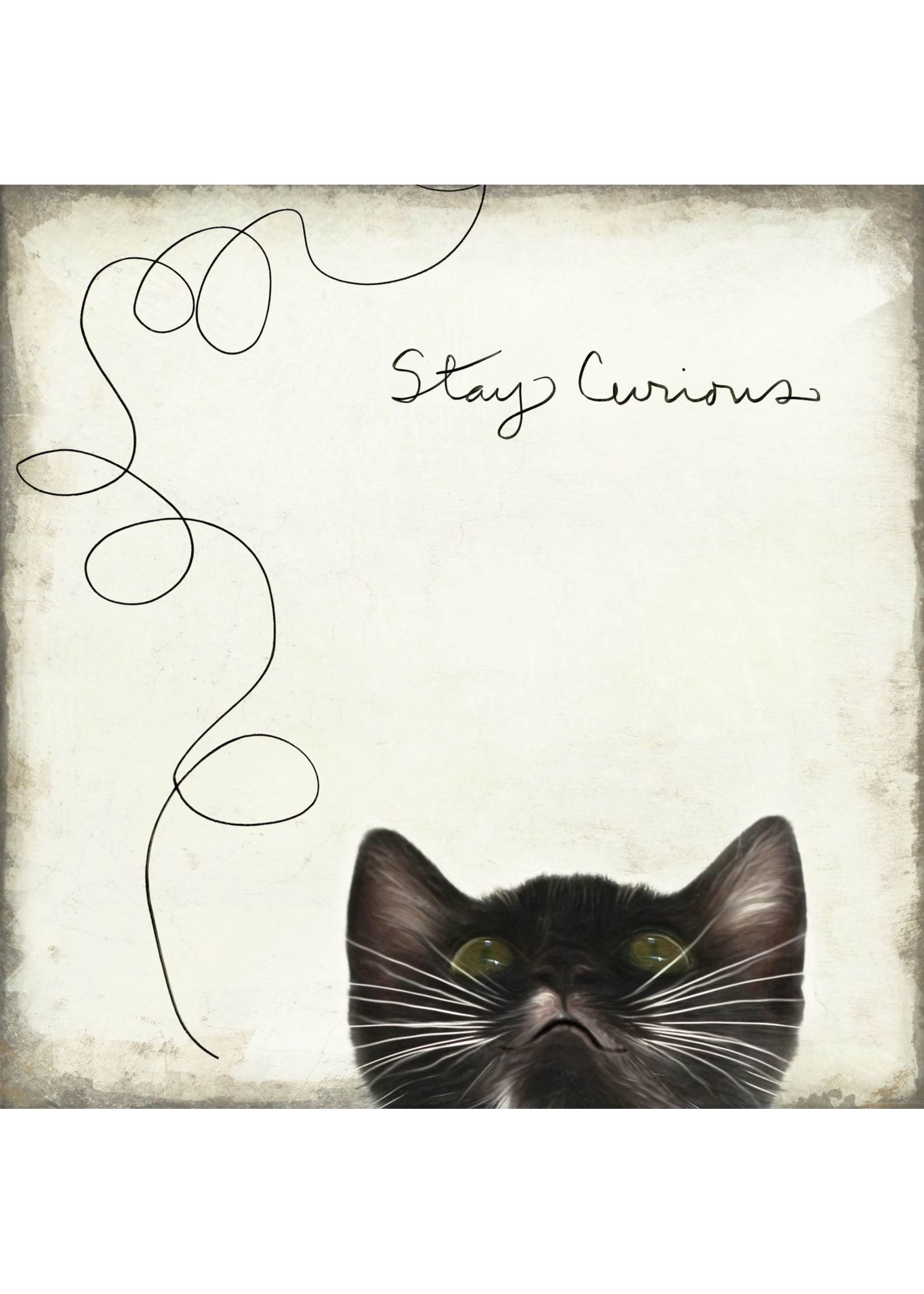 Stay Curious Coaster