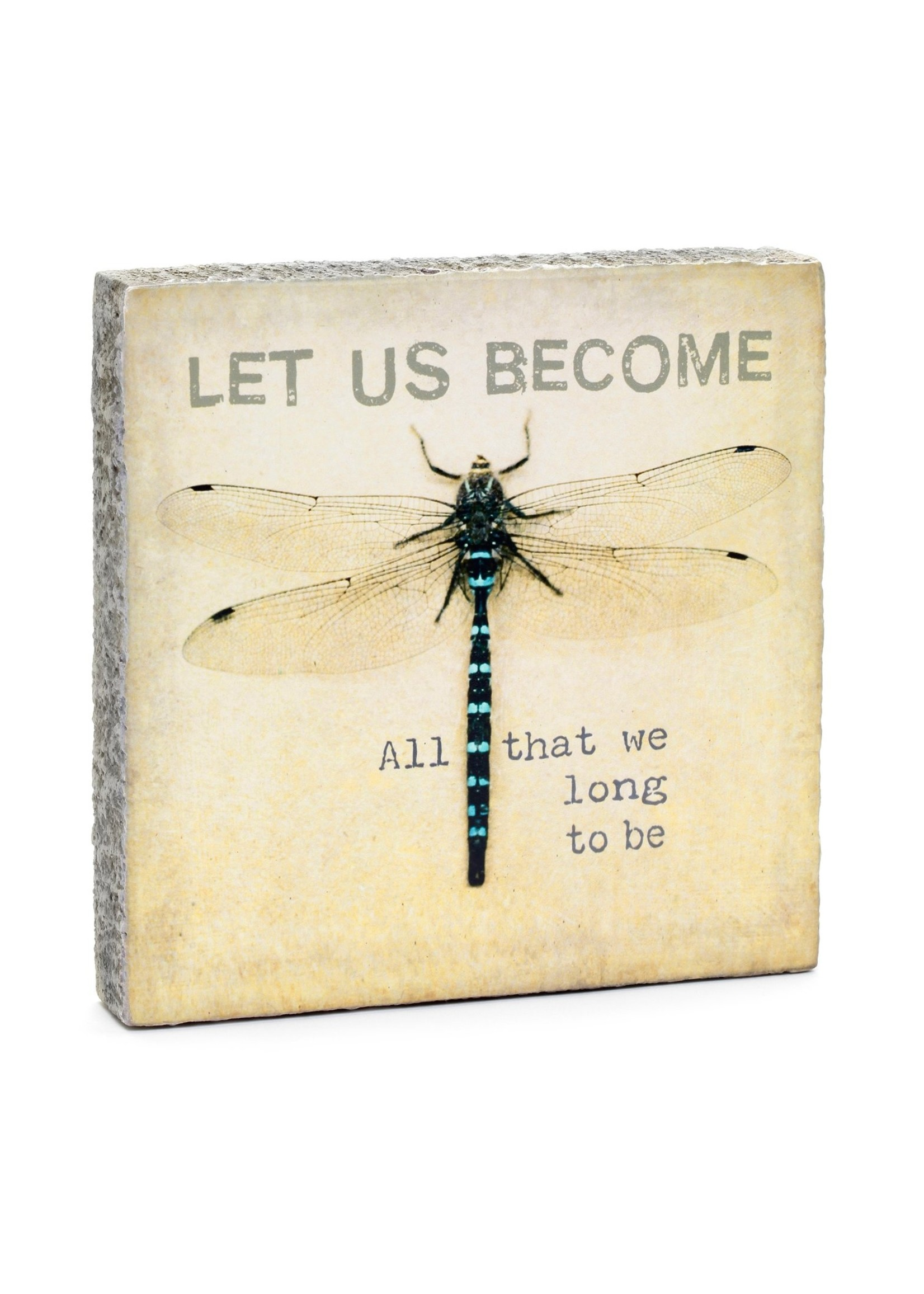 Let Us Become Dragonfly Art Block