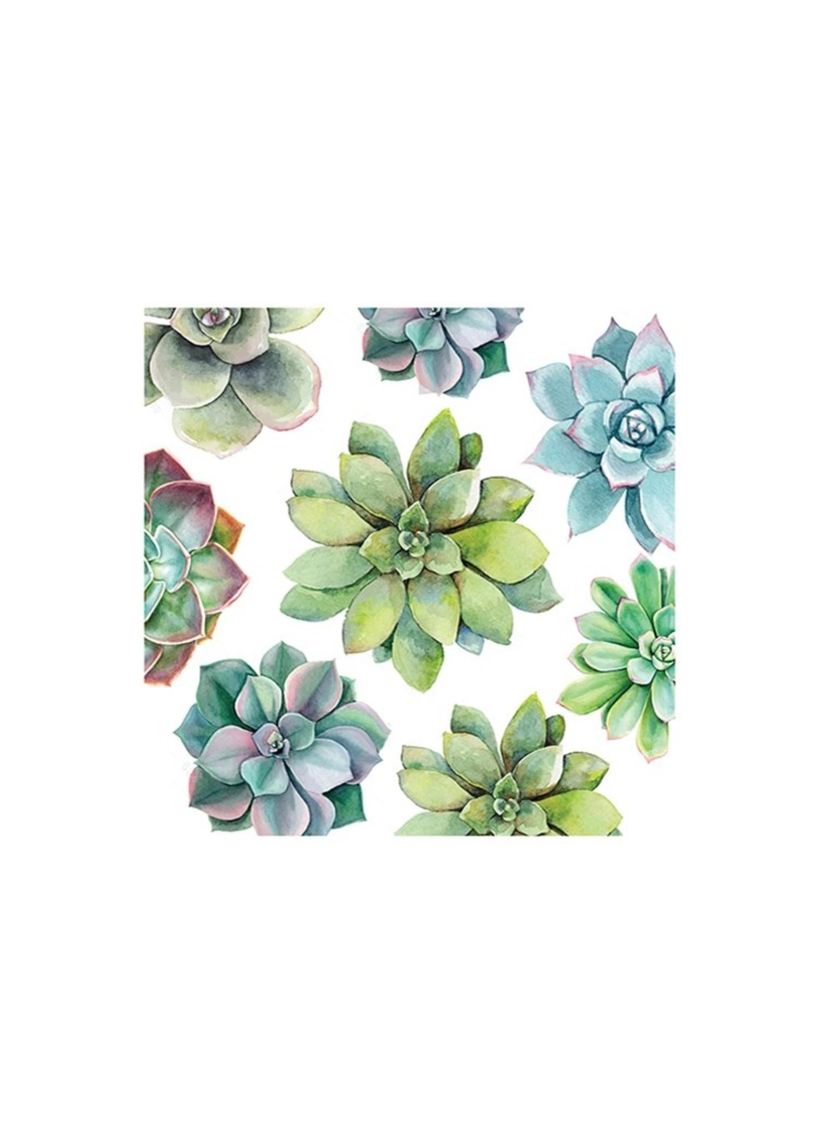 Succulent Paper Luncheon Napkin