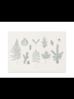 Baltic Club Forest Art Print