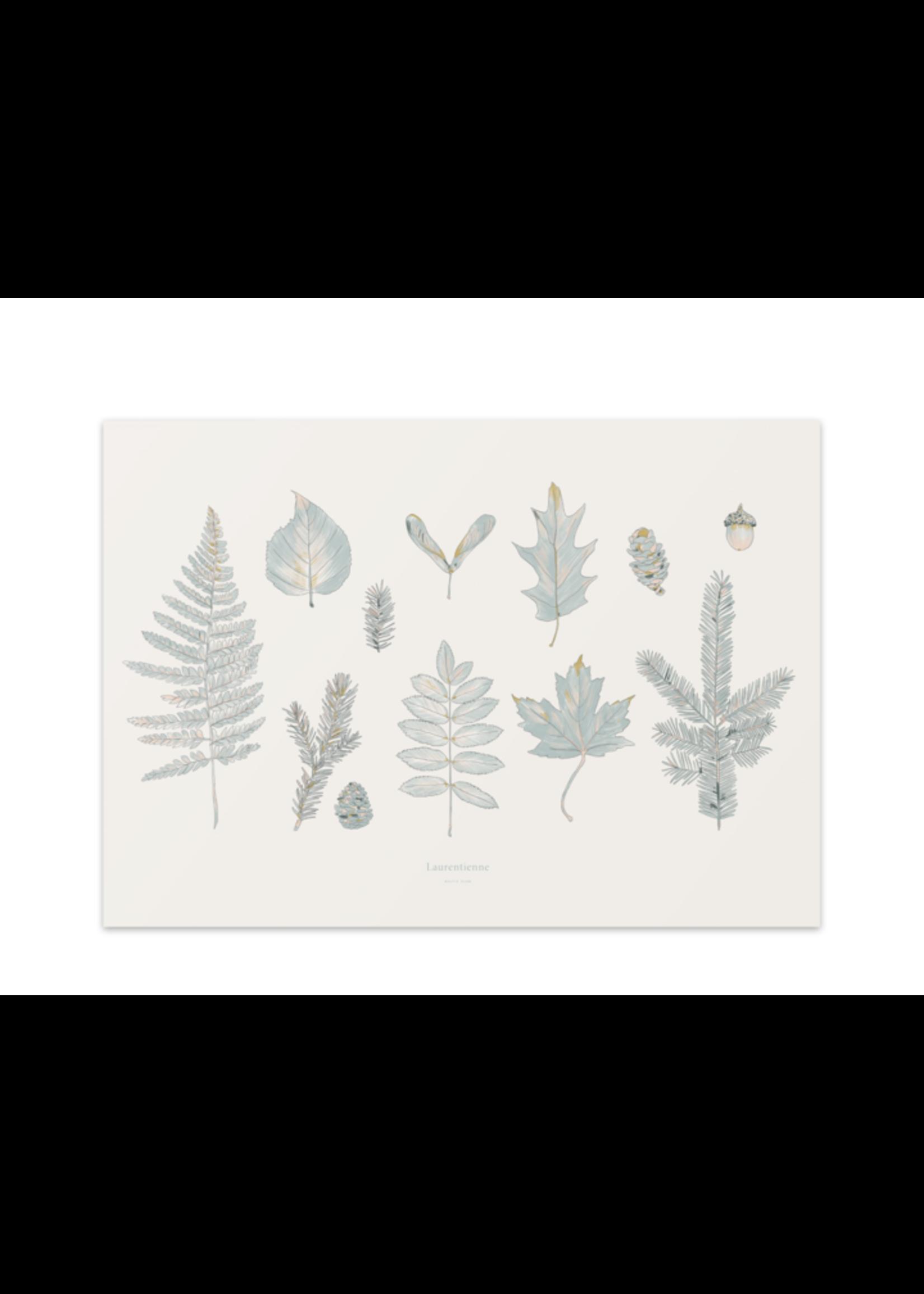 Baltic Club Laurentian Forest Art Print