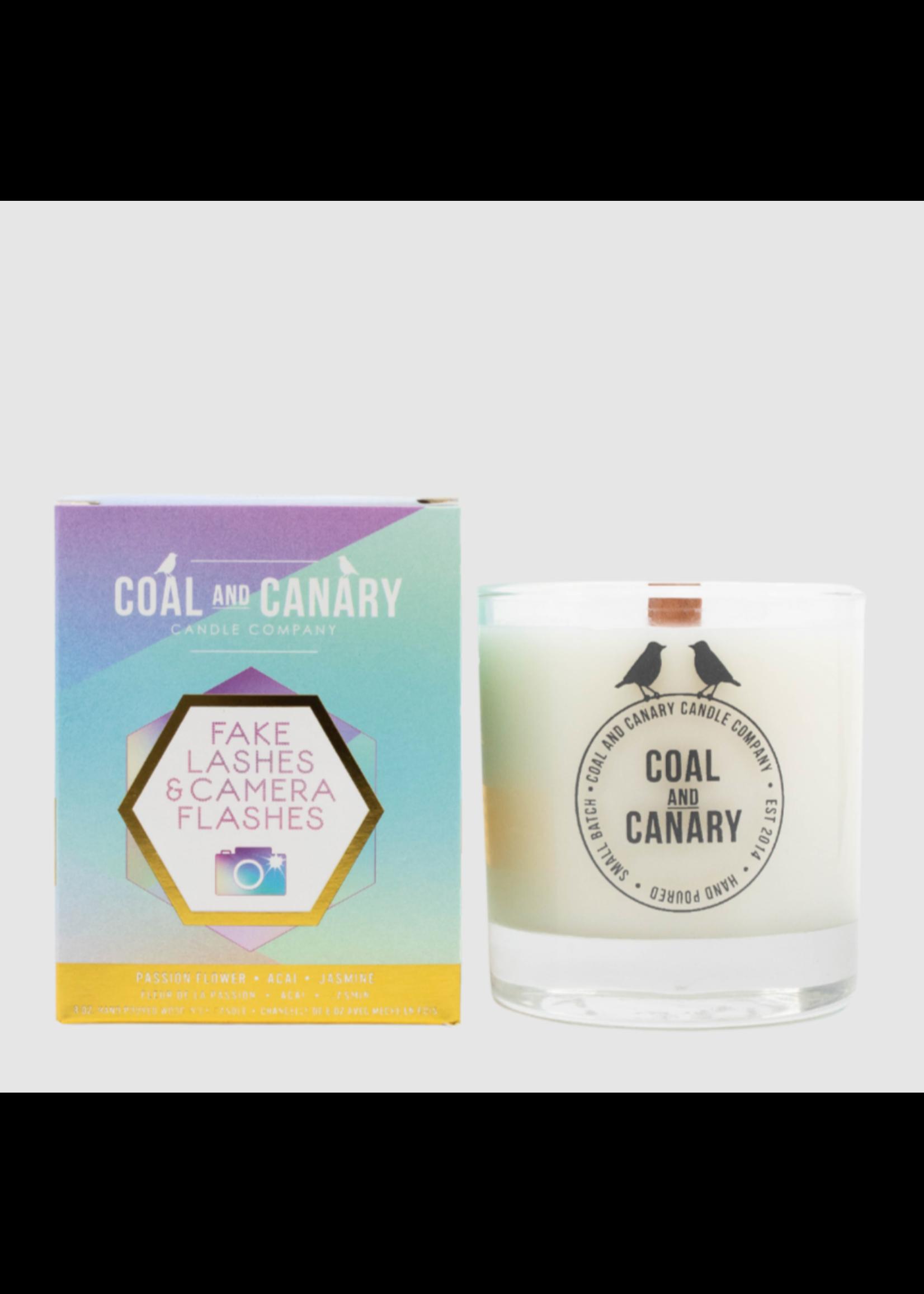 Coal and Canary Fake Lashes & Camera Flashes