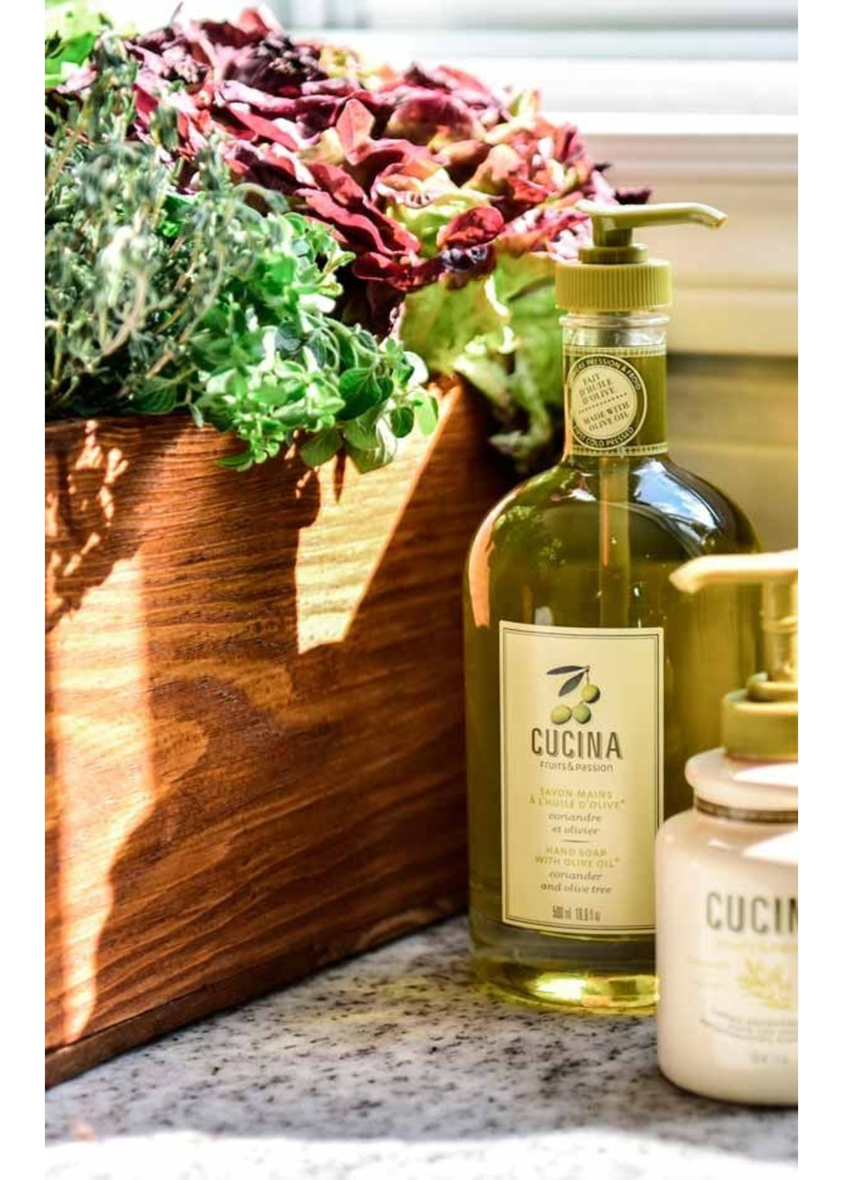 Cucina Hand Soap With Olive Oil - Coriander and Olive Tree