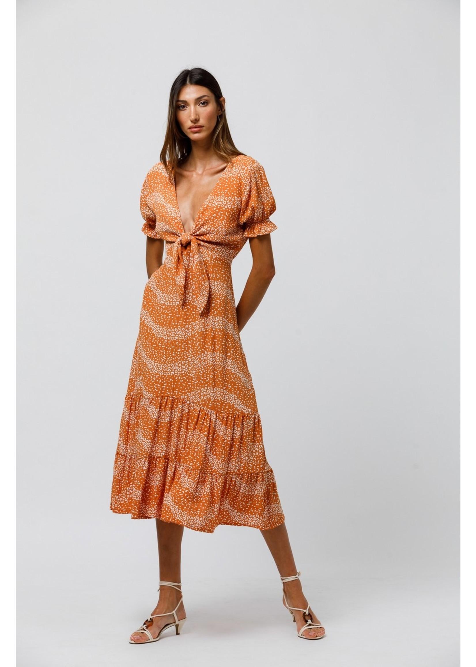 Beachgold Danny Dress