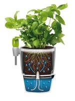 Elho Brussels all in one Herb pot white