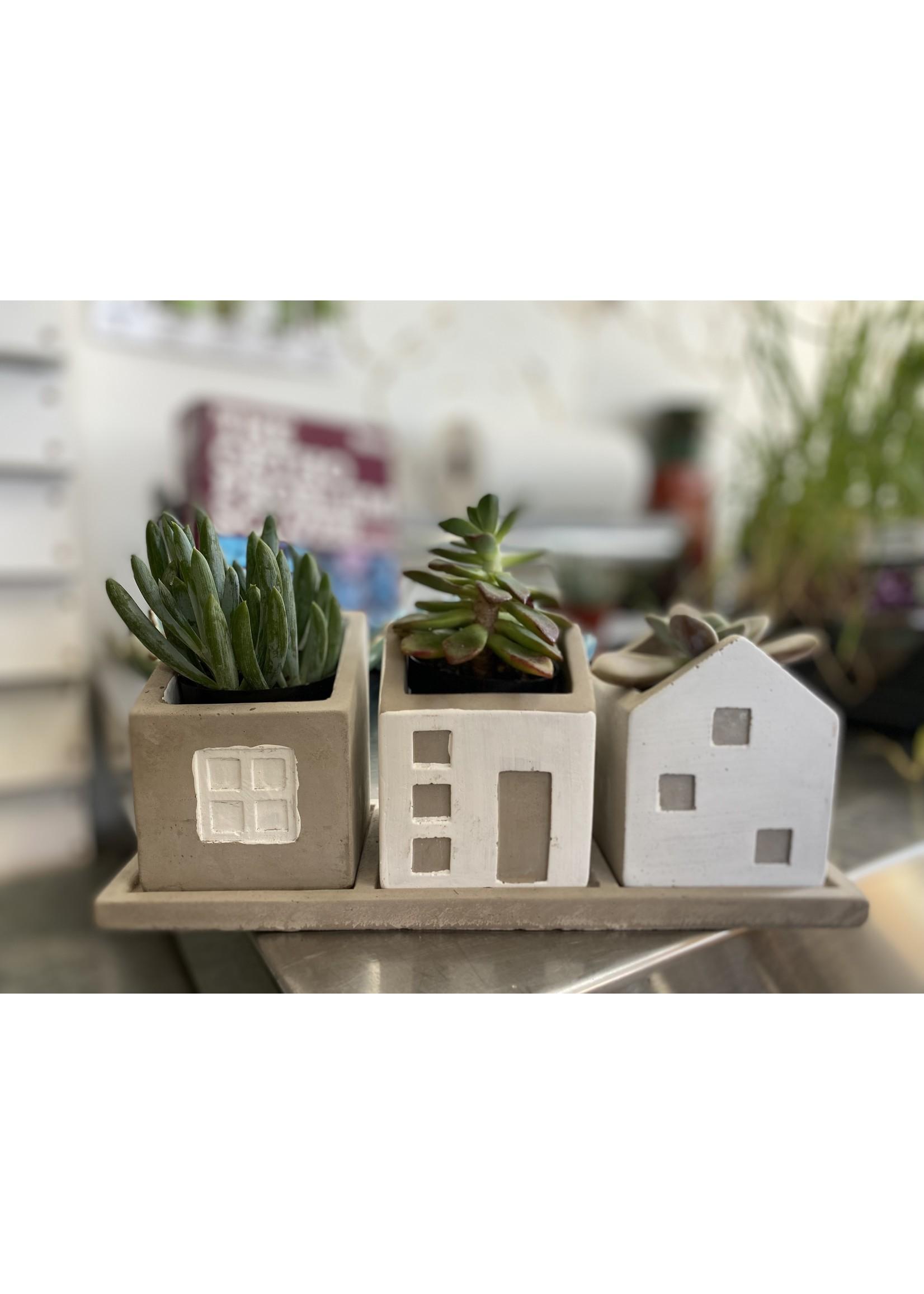 Trio House Pot