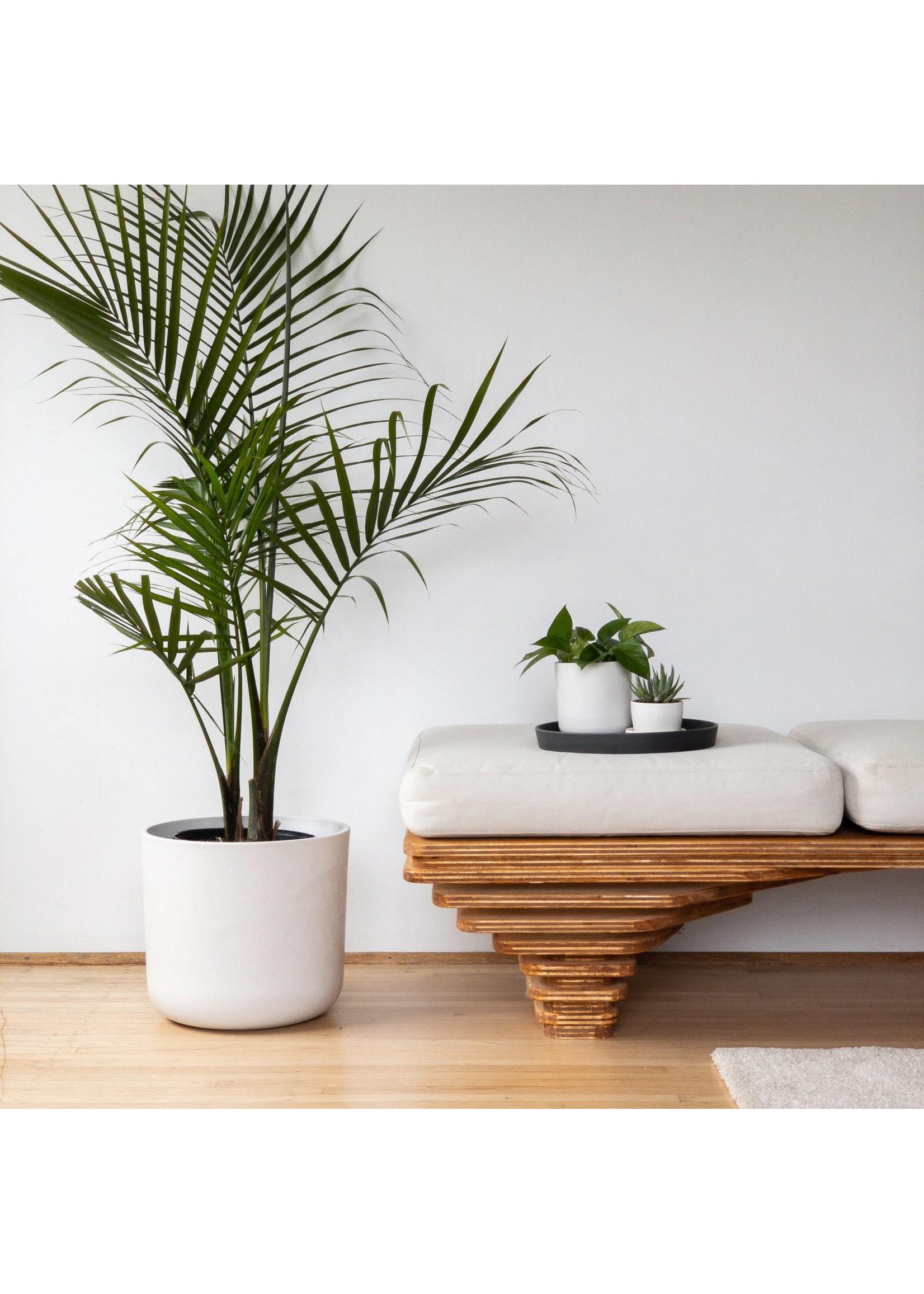 "Kanso Designs Signature Stone Planter - 12"""