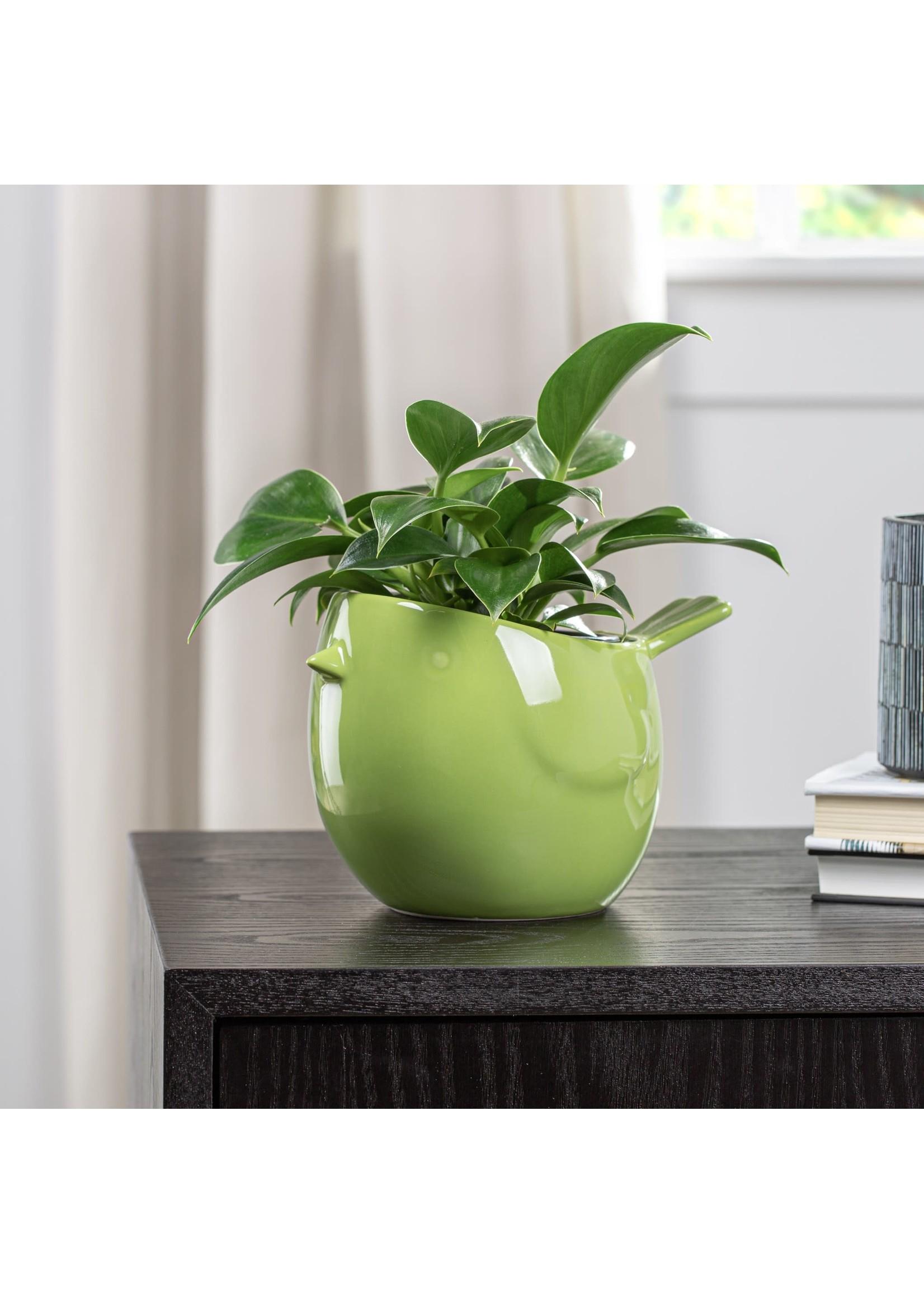Torre & Tagus Finch Ceramic Pot - Green