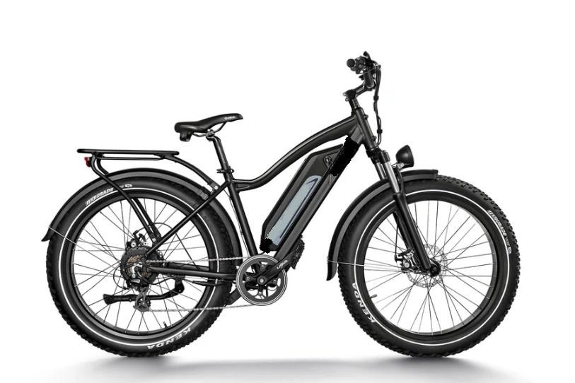 Driven Bikes Elgin Cruiser Black