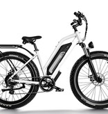 Driven Bikes Elgin Cruiser Step White