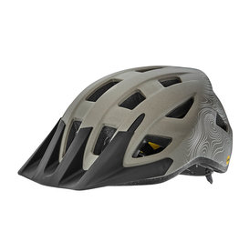 Giant Helmet Giant Path MIPS S/M Matte Metal