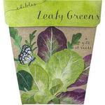Sow 'n Sow Sow 'N Sow Gift of Seeds Leafy Green