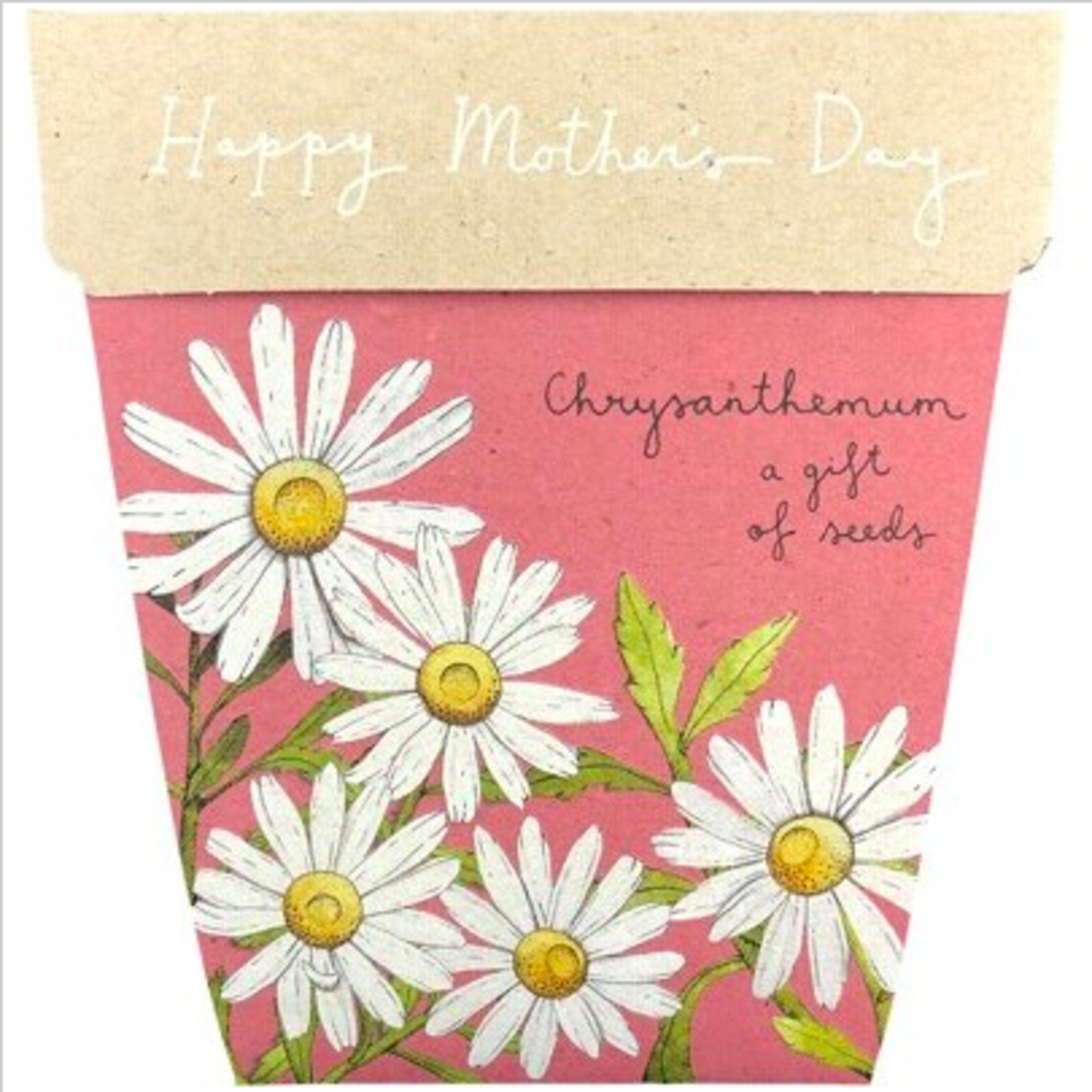 Sow 'n Sow Sow 'N Sow Gift of Seeds Mother's Day Chrysanthemum