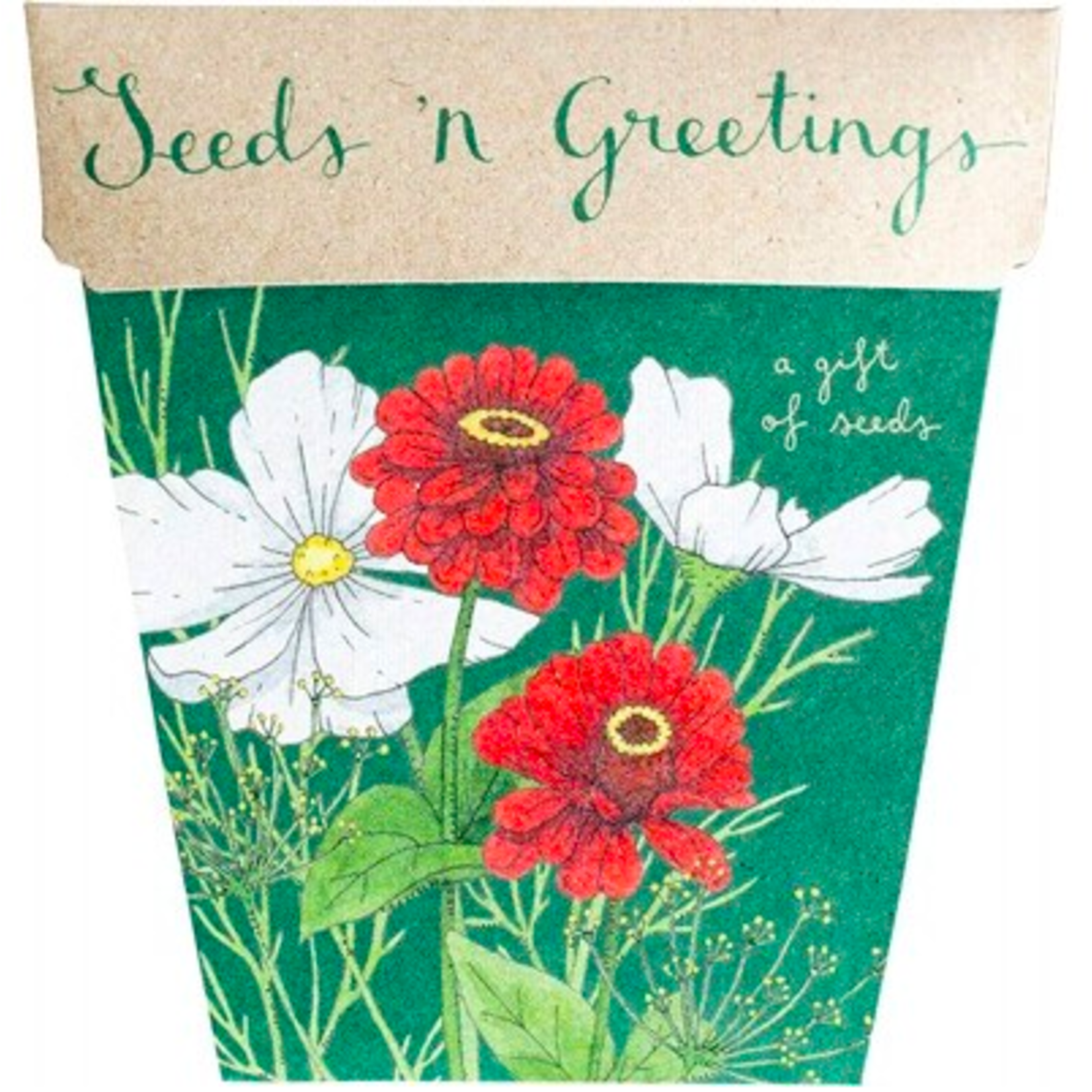 Sow 'n Sow Sow 'N Sow Gift of Seeds Seeds & Greetings