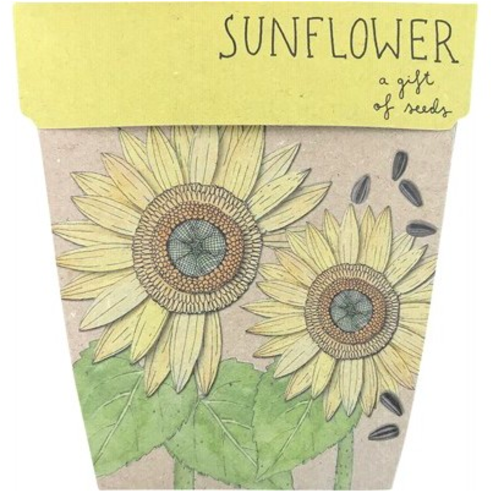 Sow 'n Sow Sow 'N Sow Gift of Seeds Sunflowers