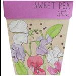 Sow 'n Sow Sow 'N Sow Gift of Seeds Sweet Pea