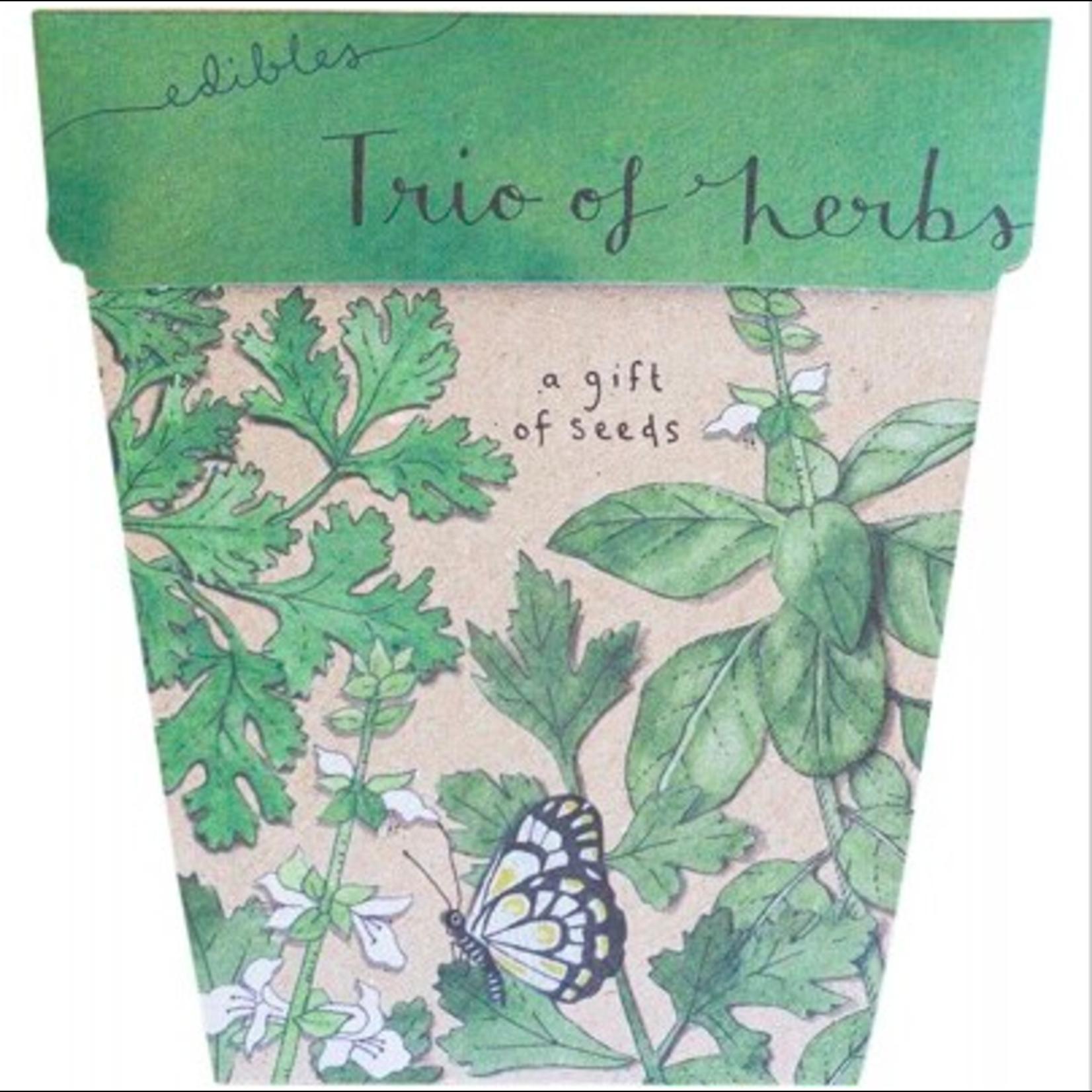 Sow 'n Sow Sow 'N Sow Gift of Seeds Trio of Herbs