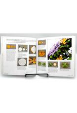 Paper Blooms Book