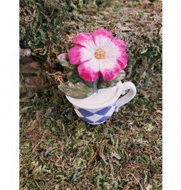 Fairy Garden Teacup Planter