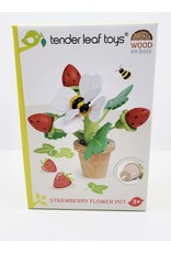 Strawberry Flower Pot Play Set