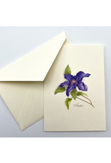 Assorted Nature Drawing Note Cards