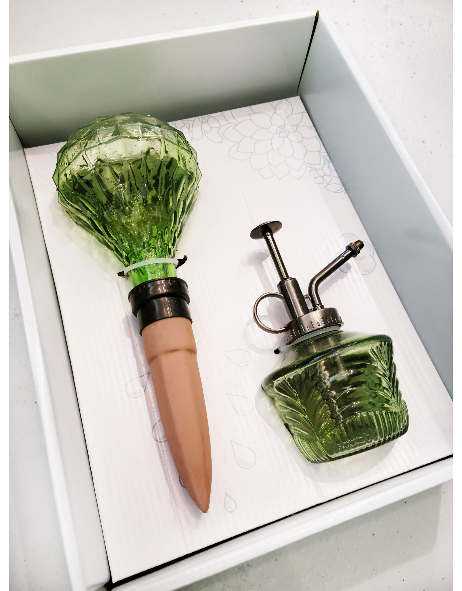 Plant Watering Gift Set Green