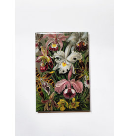 Oso and Bean Orchid Magnet