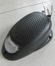 Exterior Speaker with Light