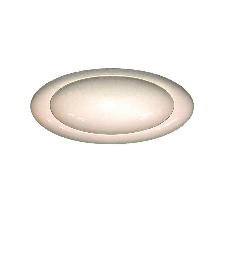 12V Incandescent White Light