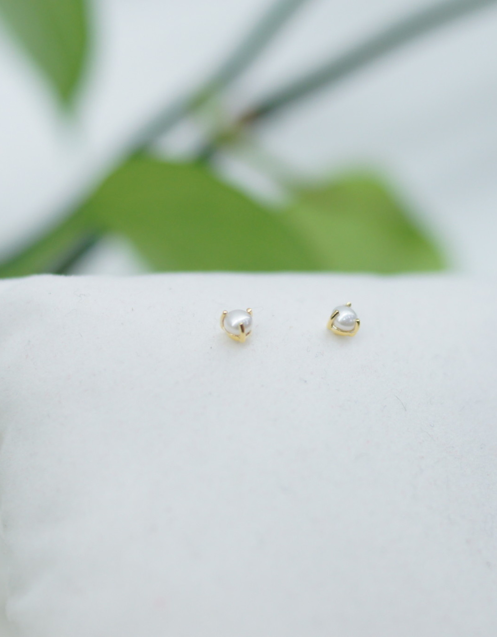 Tashi Prong Set Pearl Earrings