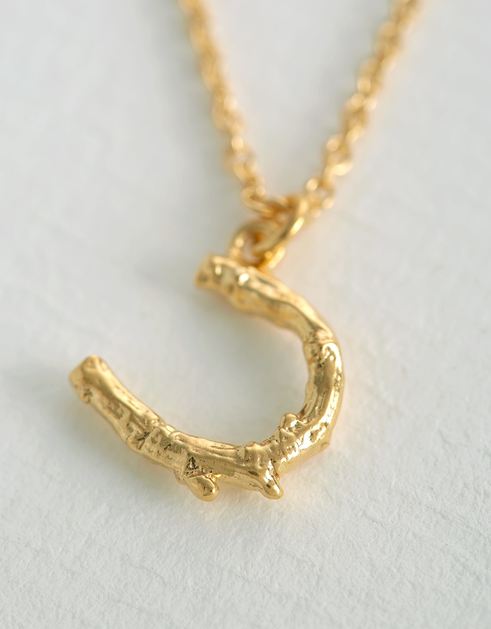Alex Monroe Horseshoe Necklace