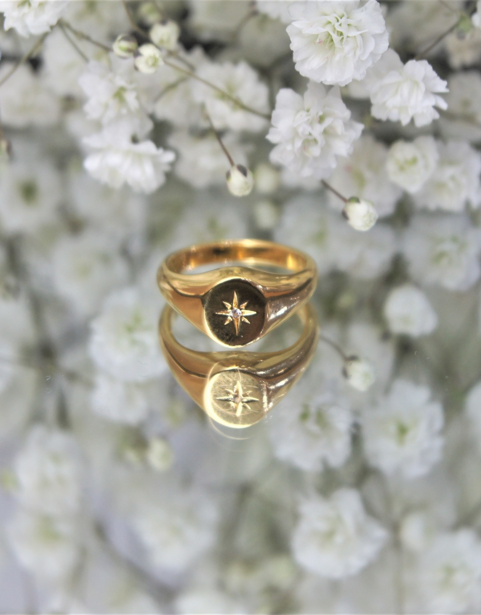 Tashi Signet Ring w/ White Sapphire