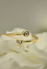 Tashi 2 Stone Cubic Zirconia Ring