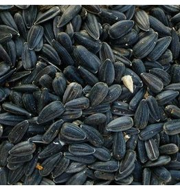 Modesto Milling Modesto Milling Whole Black Oil Sunflower Seeds