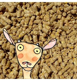 Modesto Milling Modesto Milling No Soy Dairy/Livestock Pellets 5046