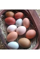 Inspire Farms Inspire Farms Organic Fed Eggs 1 dozen