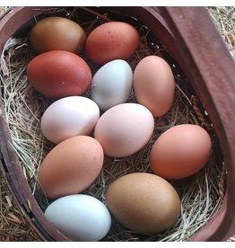 Inspire Farms Inspire Farms Organic Fed Eggs half dozen