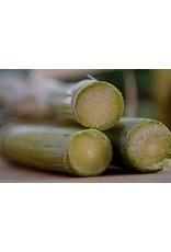 Inspire Farms Sugarcane Cuttings