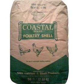 Coastal Oyster Shell Tumbled