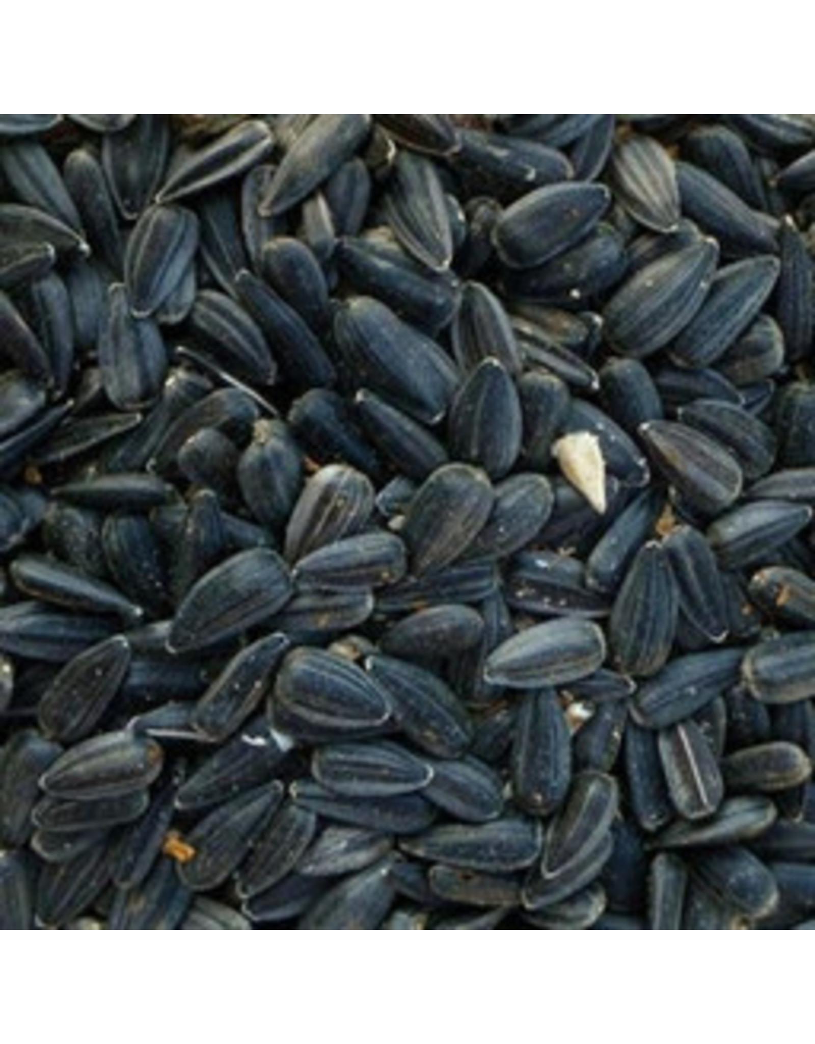 Coastal Black Oil Sunflower Seeds 1.8lb