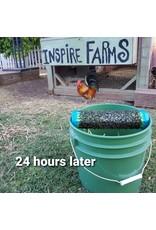 Inspire Farms Inspire Farms Fly Trap Setup