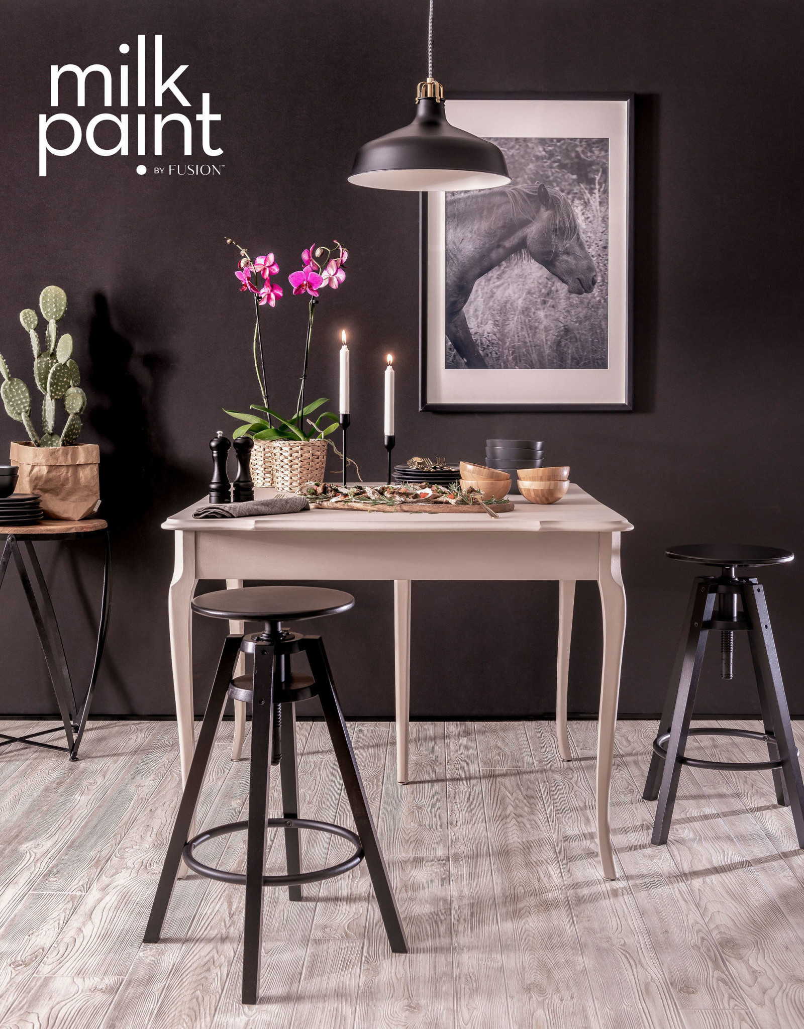 Fusion Mineral Paint Milk Paint 50g Oyster Bar