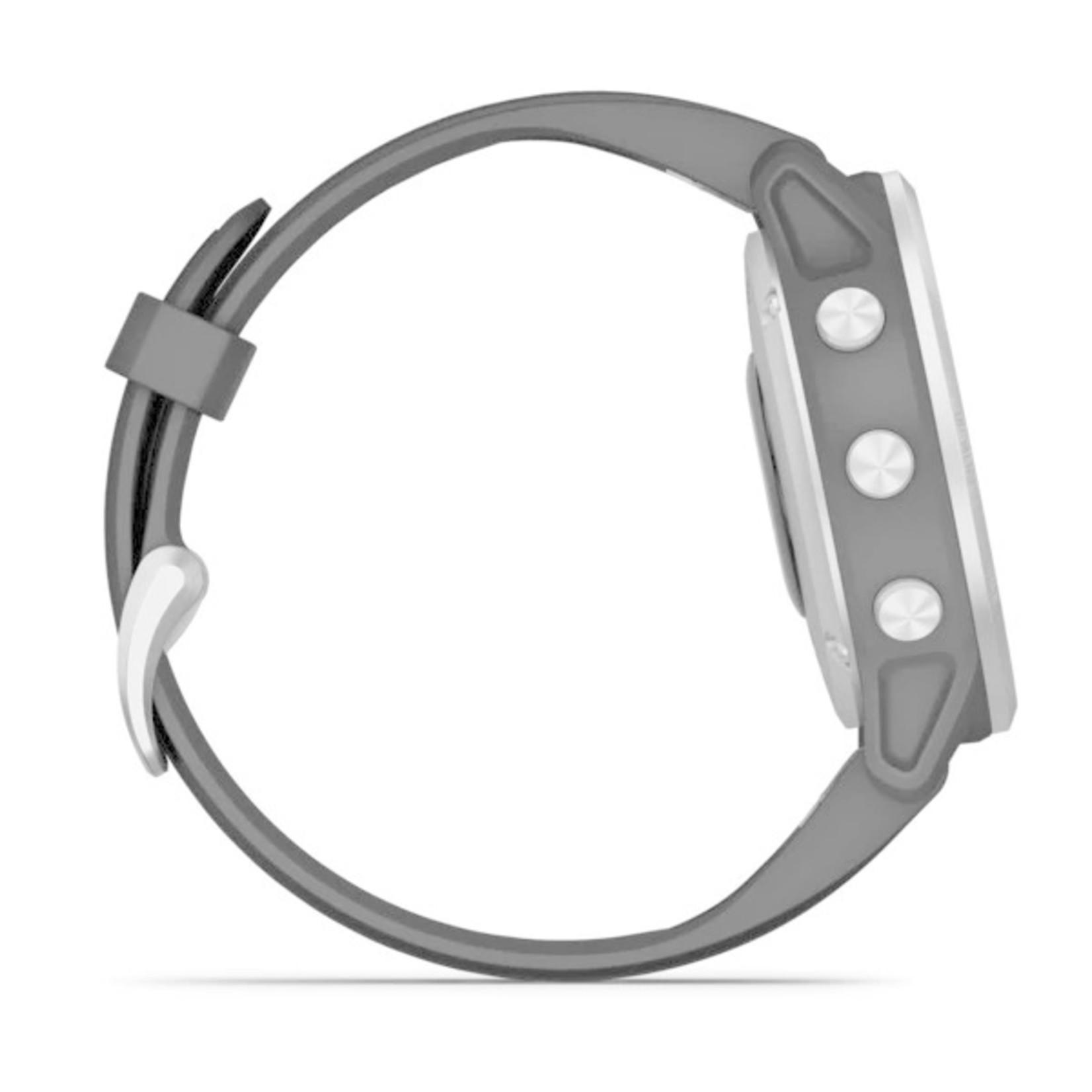 Garmin fēnix® 6S Silver with Black Band