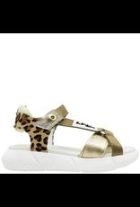 Elena Iachi ElenaIachi Cheetah Hair Calf With Gold Sandal  2447